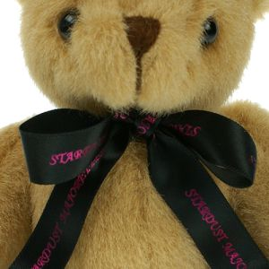 Custom Printed Teddies for Business Gifts