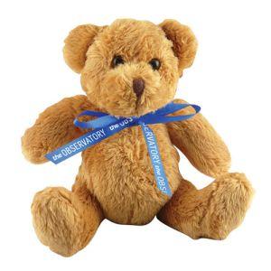5 Inch Robbie Teddy Bears