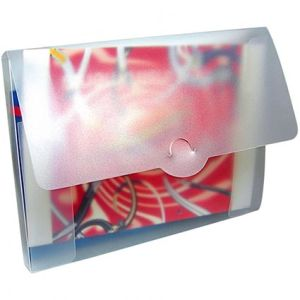 A4 Document Box Folders in Frosted Clear