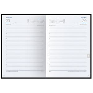 Promotional diaries for desktop marketing page layout