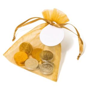 Chocolate Coin Organza Bags