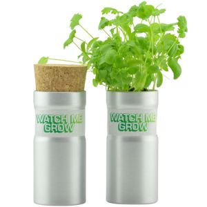 Promotional Desktop Garden Tube for office merchandise