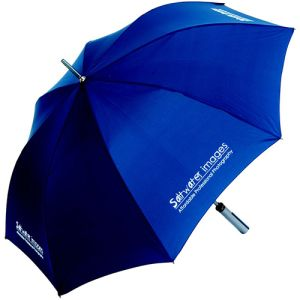 Branded Executive Gold Umbrella for Winter Marketing