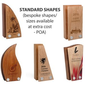 Printed Wood Awards are ideal for school handouts