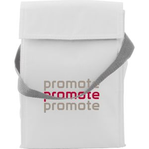 Corporate Branded Cooler Bags for Outdoor Promotions