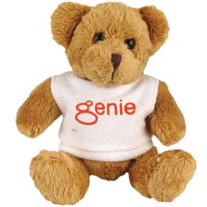 Promotional 5 Inch Robbie Teddy Bears for