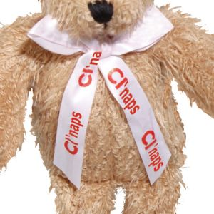 Branded Teddies for Childrens Events