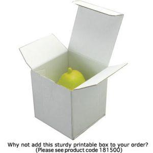 Custom Printed Stress Ball Peaches optional boxes