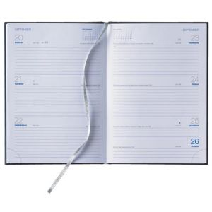 Branded week to view diaries for desks page layout