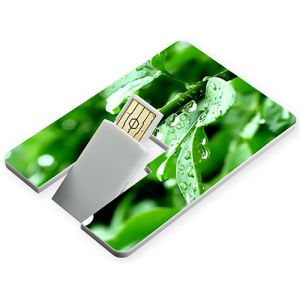 Promotional USB Flashdrive Credit Card business gifts