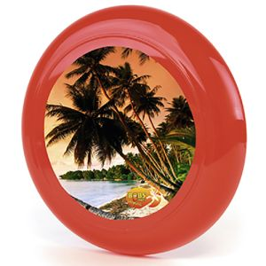 Promotional Flyer Disc for Business Giveaways