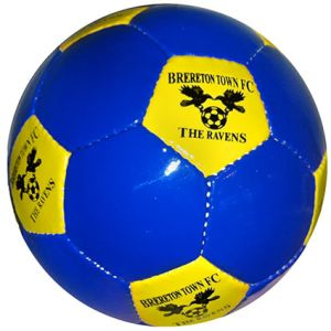 Promotional Footballs in Blue