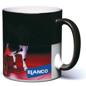 Promotional Colour Changing Mug for Events