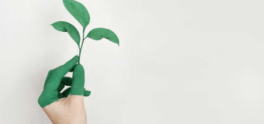 The Best New Eco Friendly Promotional Products For UK Businesses