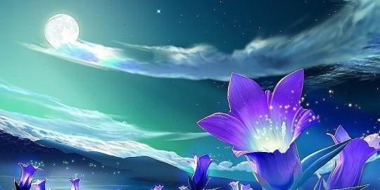 Spirituális szindrómák és edzésterv a Léleknek