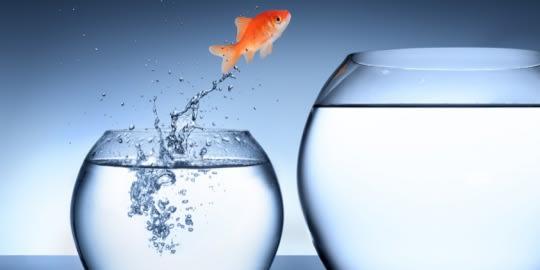 Cselezd ki a változást, változz te is!