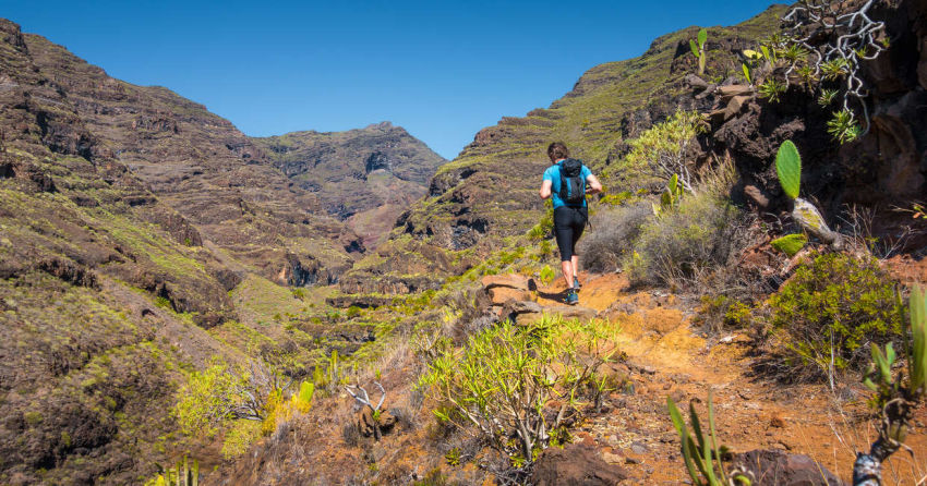 Canary Islands Walking - La Palma Tour Amigo
