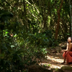 Living Heritage Koslanda à Ella/Haputale/Koslanda: Beautiful nature walk