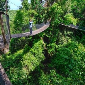 Bungaraya Island Resort in Kota Kinabalu: Canopy Walking