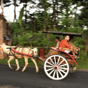 Plataran Borobudur Resort & Spa in Yogyakarta: Carriage Tour