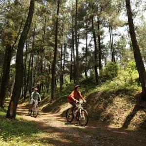 Plataran Borobudur Resort & Spa in Yogyakarta: Cycling Tour