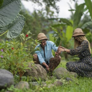 Wapa di Ume Sidemen à Ouest de Bali: Eco Memories