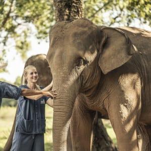 Anantara Golden Triangle Elephant Camp & Resort à Triangle d'Or: Elephant Experience