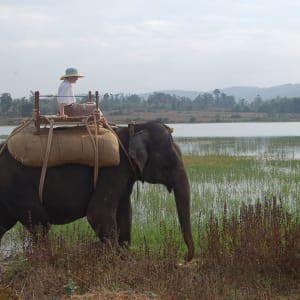 Evolve Back Kuruba Safari Lodge à Parc national de Nagarhole: Elephant Ride2