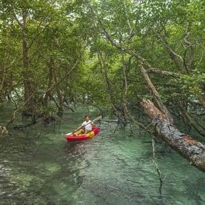 Wa Ale in Mergui Archipel: Kayak