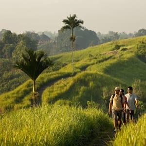 COMO Uma Ubud: Morning Walk