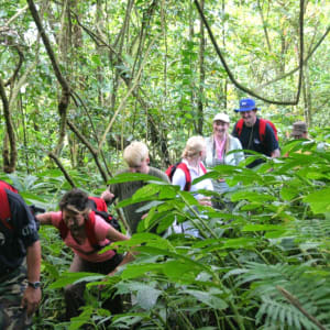 Bali aktiv erleben ab Südbali: activities: Rainforest trekking