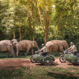 Anantara Golden Triangle Elephant Camp & Resort in Goldenes Dreieck: Royal Enfield Sidecars