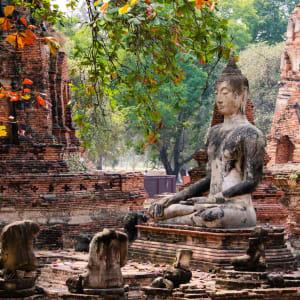 Nature & culture autour de Bangkok: Ayutthaya ruins