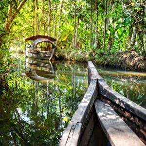Backwaters von Kerala ab Kochi: Backwaters: dense jungle