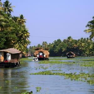 Backwaters von Kerala ab Kochi: Backwaters: houseboats