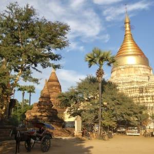 Découverte active du Myanmar de Yangon: Bagan: golden pagoda