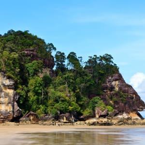 Höhepunkte Borneos Option Longhouse ab Kuching: Bako National Park