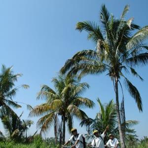 Bali aktiv erleben ab Südbali: Bali Biking