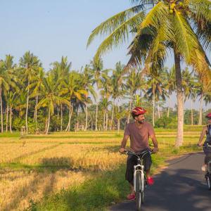 Nature et traditions à l'est de Bali de Sud de Bali: Bali - Couple riding a bicycle through the tropical island of Bali