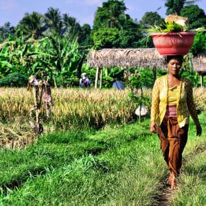 Découverte active de Bali de Sud de Bali: Bali farmer