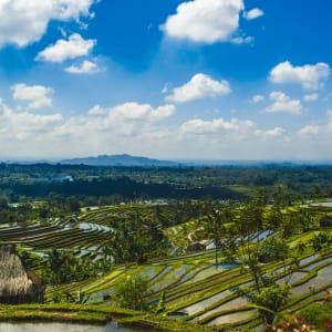 Imposanter Ijen Krater ab Südbali: Bali Jatiluwih Rice Terraces