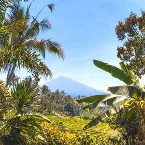 Erlebnisreiches Bali ab Südbali: Bali Mount Batukaru