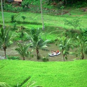 Bali aktiv erleben ab Südbali: Bali Rafting