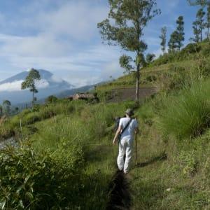 Découverte active de Bali de Sud de Bali: Bali: Trekking