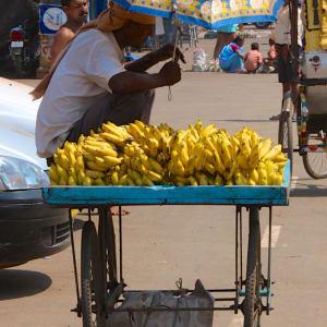 Odisha, terre des temples de Bhubaneswar: Banana Seller in Puri