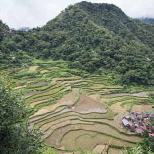 Nord-Luzon Rundreise ab Manila: Banaue Bangaan Rice Terraces