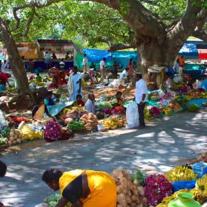 Le sud diversifié de l'Inde de Kochi: Bangalore: local market