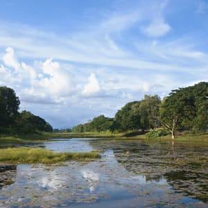 Battambang & Farmhouse Smiling Gecko de Siem Reap: Banteay Chhmar river scenery