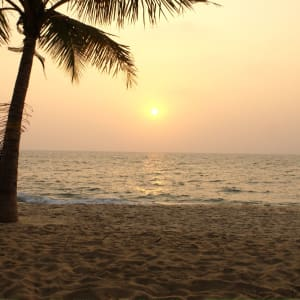 Beach Symphony in Mararikulam: