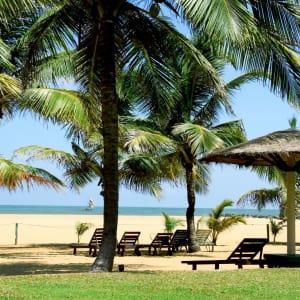 Goldi Sands in Negombo: